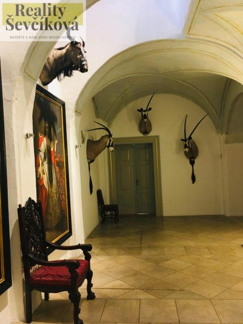 Pronájem atypického 1+kk, 84 m2 – Karla Tomana