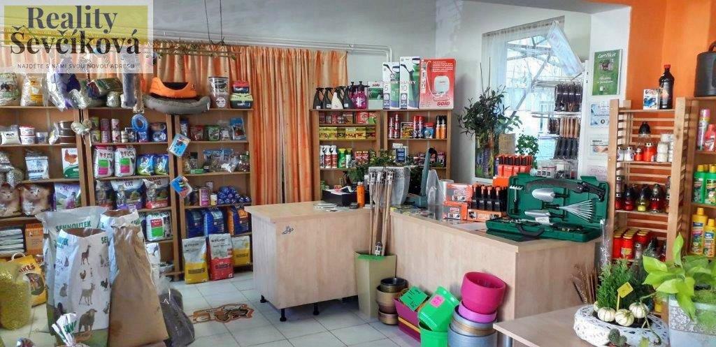 Pronájem prodejny v centru, 121 m2 – Holice