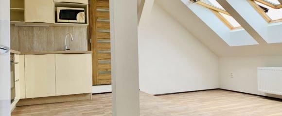 Pronájem atypického loftu, 80 m2 – Smetanovo nábřeží